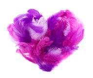 Heart in pink feathers isolated on white Stock Photo