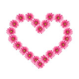 Heart from pink gerbera flowers stock image