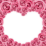 Heart Pink Rose Frame Stock Image