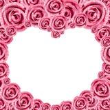 Heart Pink Rose Frame Stock Image