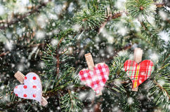 Heart pins on christmas tree Royalty Free Stock Photo