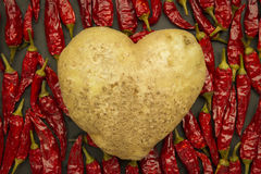Heart potato with red chili Stock Image