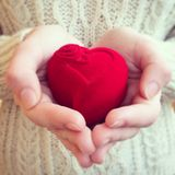 Heart present in hands Stock Photography