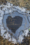 Heart Puddle Stock Images