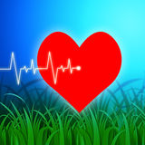Heart Pulse Indicates Valentines Day And Cardiology Stock Photo