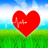 Heart Pulse Represents Valentine Day And Cardiology Royalty Free Stock Images