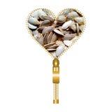 Heart with pumpkin seeds. Heart shape made of zip filled with pumpkin seeds vector illustration