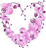 Heart from purple orchid. Vector illustration Royalty Free Stock Image