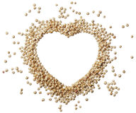 Heart of quinoa grain isolated on a white background Royalty Free Stock Image