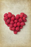 Heart from rasberries Stock Images