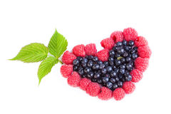 Heart of raspberries and blueberries Stock Image