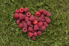 Heart of raspberries on the grass Stock Photo