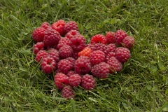 Heart of raspberries on the grass Stock Image