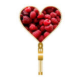 Heart with raspberries. Heart shape made of golden zip and filled with raspberries texture royalty free illustration