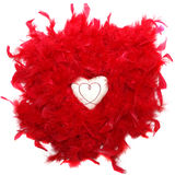 Heart in the red feathers Stock Image