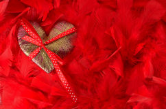 Heart of red feathers Stock Images