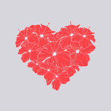 Heart of red flower with leaves. Floral heart of hibiscus. Stock Photos