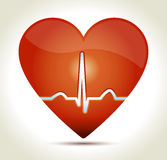 Heart-red-normal-rhytm. Glossy red heart with normal EKG sinus rhythm and shadow on light background Stock Images