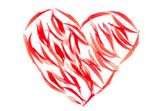 Heart from red petals over white Royalty Free Stock Photography