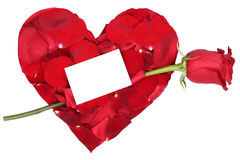 Heart with red rose love topic on Valentine's and mothers day, w Royalty Free Stock Photos