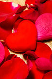 Heart with red rose petals Stock Photos