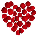 Heart of red rose petals isolated on white background Stock Photography