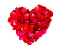 Heart of red rose petals . Royalty Free Stock Image