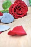 Heart and red rose Royalty Free Stock Images
