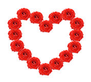 Heart of red roses. Natural decoration of red roses in form of heart Stock Photos