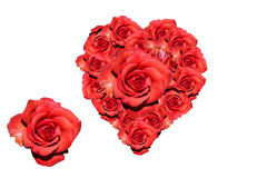 Heart of red roses. Heart: red roses - symbolic image for love, affection and Valentines Day Royalty Free Stock Photos