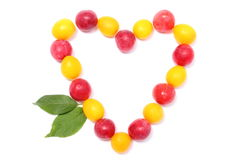 Heart of red and yellow mirabelle on white background Royalty Free Stock Photography