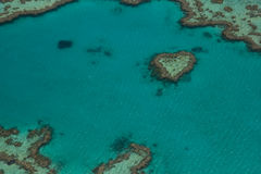 Heart reef Royalty Free Stock Photos