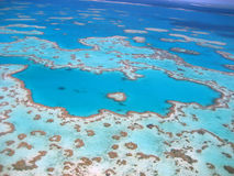 Heart Reef Stock Images