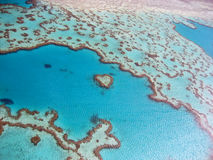 Heart Reef Royalty Free Stock Photography