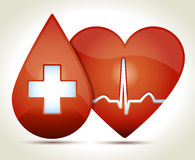 Heart-rhythm-blood-cross-illustration. Glossy red heart with normal EKG sinus rhythm and drop of blood, white croos Royalty Free Stock Image