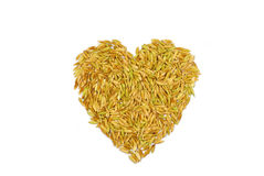 Heart Rice. Seed Grain Rice Riceplane Heart Is Heart Rice Stock Photos