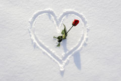 Heart with rose as symbol for love Stock Images