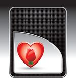 Heart and rose on black checkered backdrop Royalty Free Stock Images