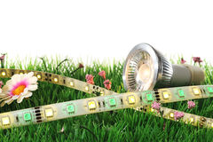 Heart with rose. Different LEDs-technologies on a lawn stock photos