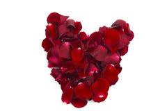 Heart of rose petals stock photo