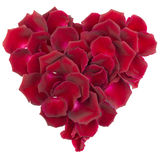 Heart of rose petals. Heart of velvety red rose petals on white background stock images