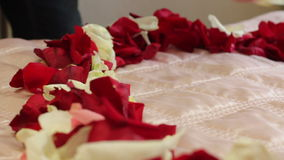 Heart of rose petals on the bed stock video footage