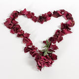 Heart of rose petals Stock Image