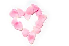 Heart of rose petals royalty free stock photo