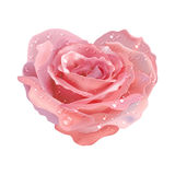 Heart-rose. Vector object flower on a white Stock Photo