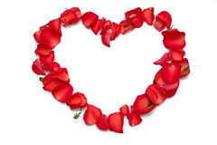 Heart from roses Royalty Free Stock Photos