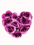 Heart of roses. Heart shape made of purple roses Royalty Free Stock Photos
