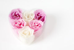 Heart of roses. Heart of pink and white roses on white background Stock Image