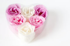 Heart of roses. Heart of pink and white roses on white background Royalty Free Stock Photography