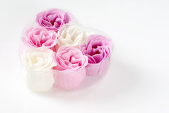 Heart of roses. Heart of pink and white roses on white background Royalty Free Stock Photos